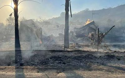 Relief fund for Cyprus Fire Disasters